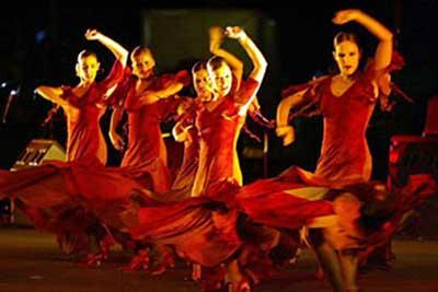 gall-flamenco