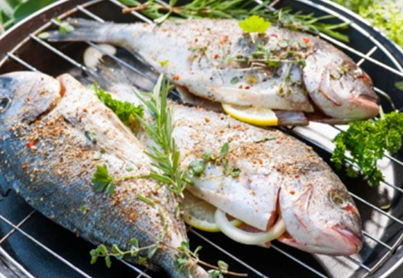 griglie-pesce